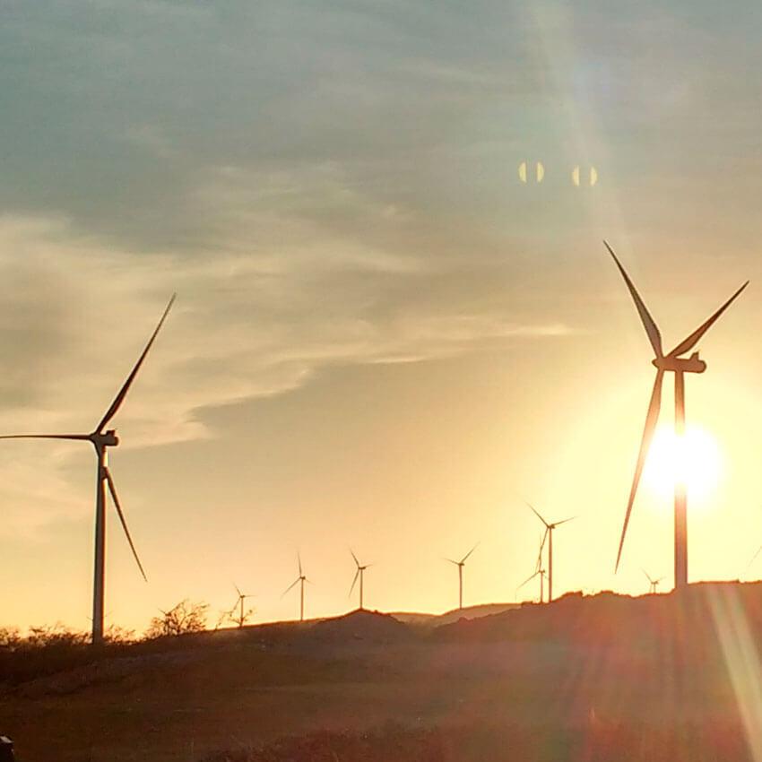 Moinhos de energia eólica no campo aberto de um dia ensolarado
